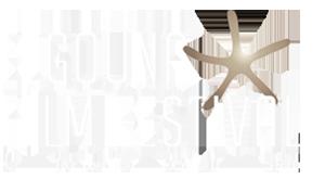 el-gouna-film-festival-logo-rev-300